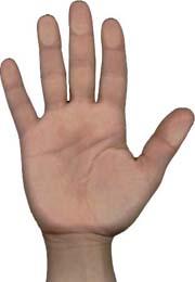 La oración de los 5 dedos